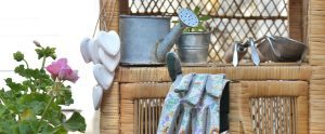 Revamping Your Garden Using Thrift Store Finds